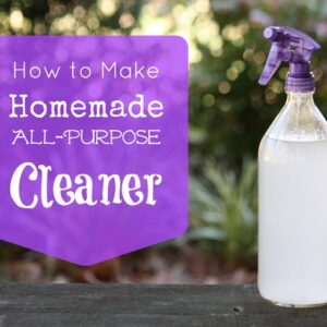 Top 10 DIY Cleaning Tips and Products | Top Inspired