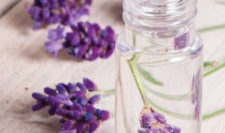 Top 10 DIY Beauty Products | Top Inspired