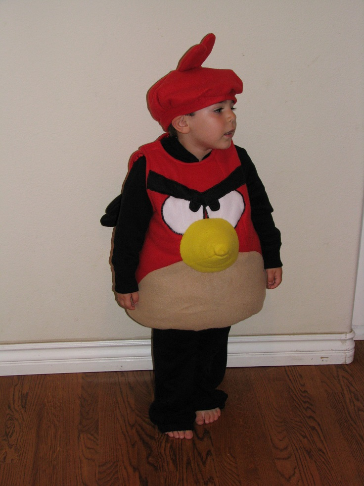 Top 10 DIY Kids Halloween Costumes