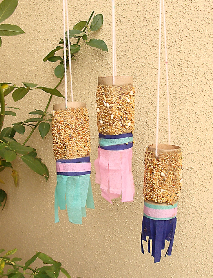 Top 10 best toilet paper rolls crafts for Toilet paper tube bird feeder