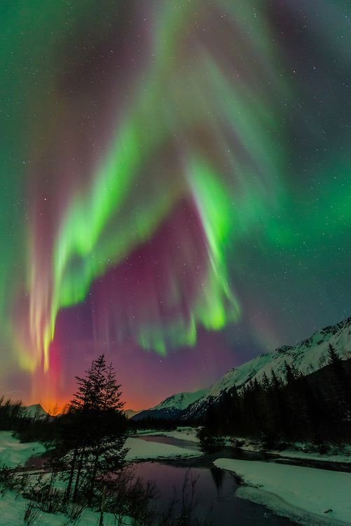 Aurora-in-Alaska