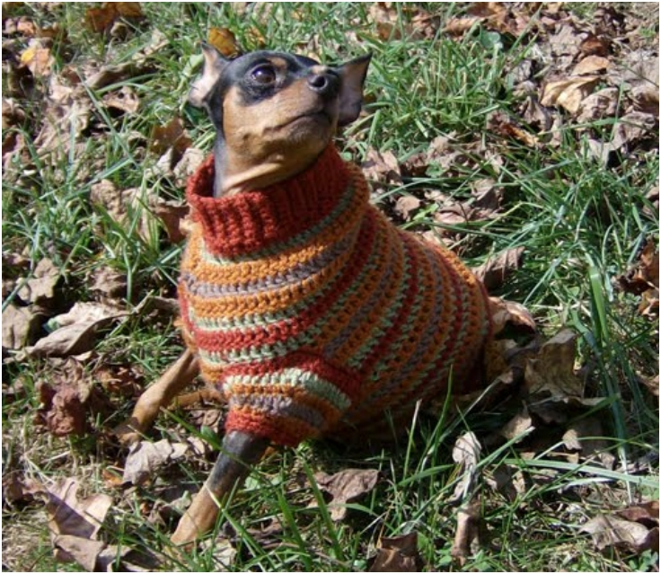 Autumn-Stripes-Crochet-Min-Pin-Sweater