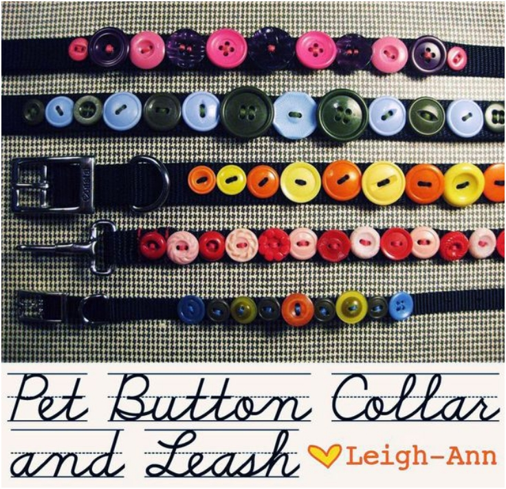 Button-Collar-for-your-Pet