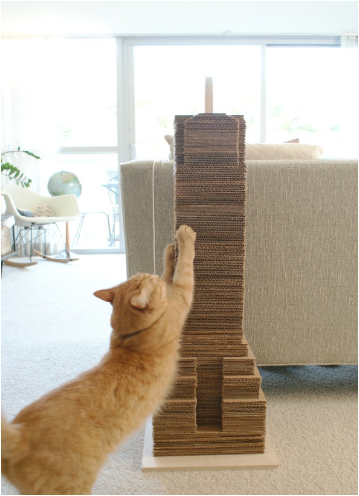 Top 10 Diy Cat Scratching Posts And Pads Top Inspired