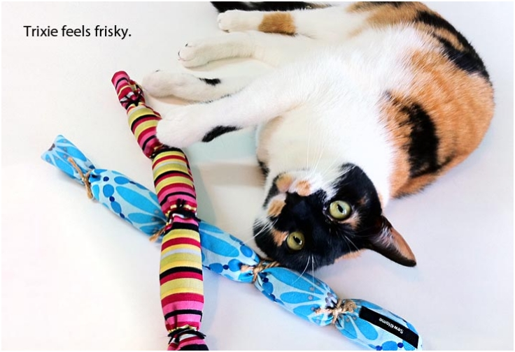 Top 10 Fun DIY Cat Toys
