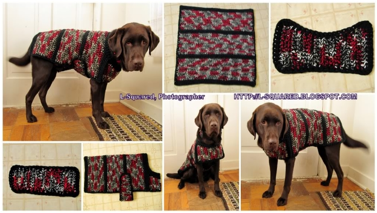 Crochet Project with Pattern Dog Sweater jacket