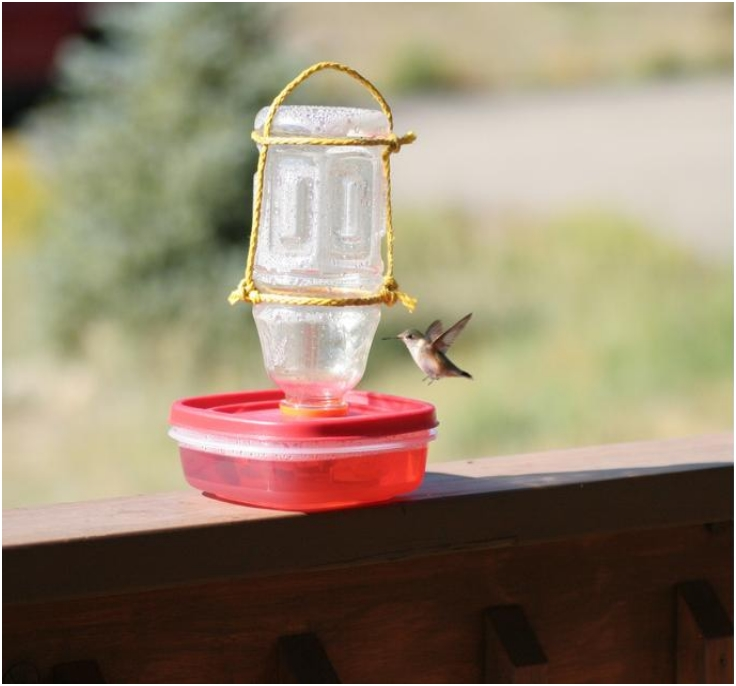 DIY-Hummingbird-Feeder