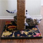 Top 10 DIY Cat Scratching Posts and Pads | Top Inspired