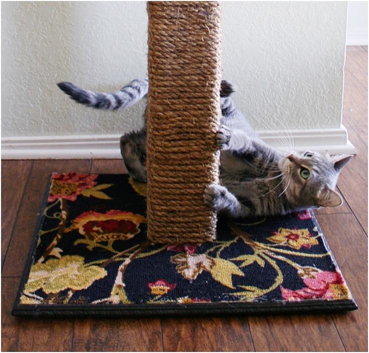 Diy-Cat-Scratching-Post