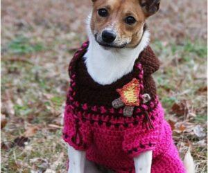 Top 10 Crochet Dog Sweaters (Free Crochet Patterns)
