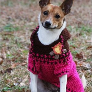 Top 10 Cute DIY Dog Sweaters (With Free Crochet Patterns) | Top Inspired