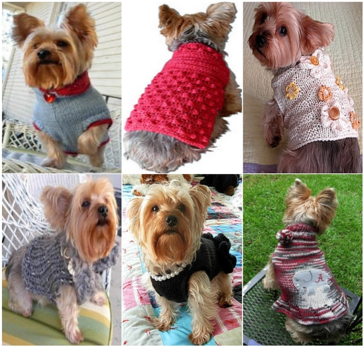 Top 10 Cute DIY Dog Sweaters (With Free Crochet Patterns ...