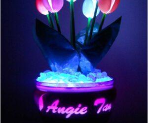Top 10 DIY Plastic Spoon Decorations
