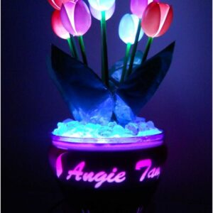Top 10 DIY Plastic Spoon Decorations | Top Inspired