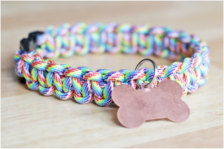 top 10 lovely diy pet collars top inspired