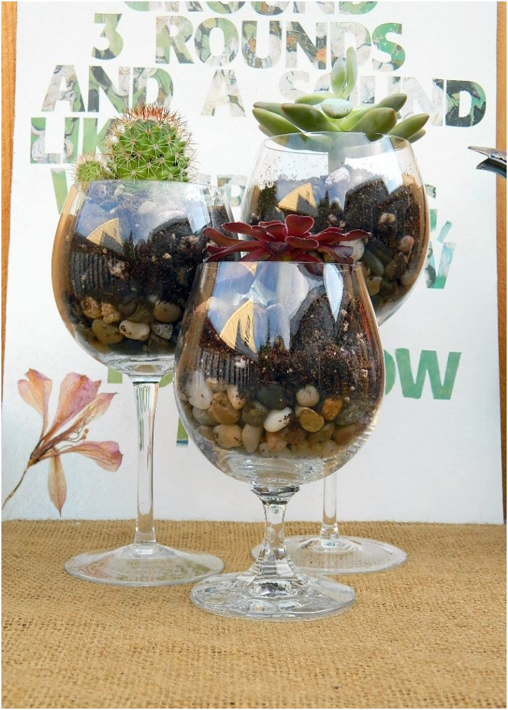 Wine-Glass-Terrariums