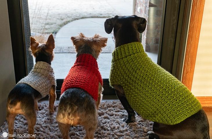 dog-sweater-crochet-pattern-22
