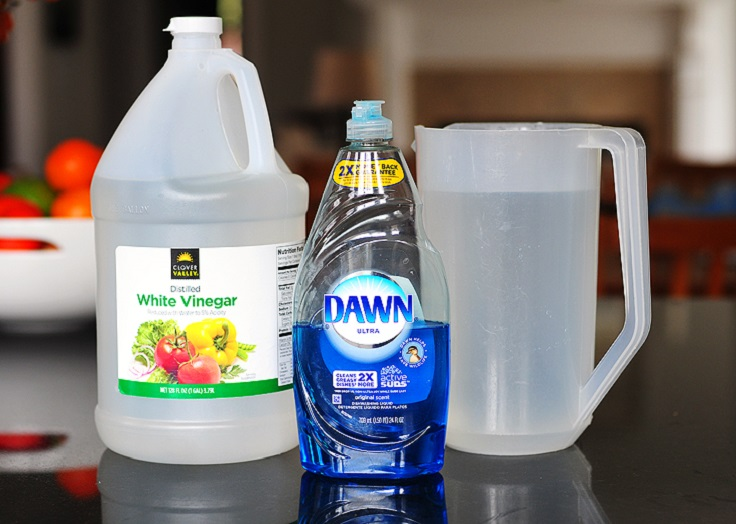 Dawn And Peroxide Stain Remover Cleaning Tips