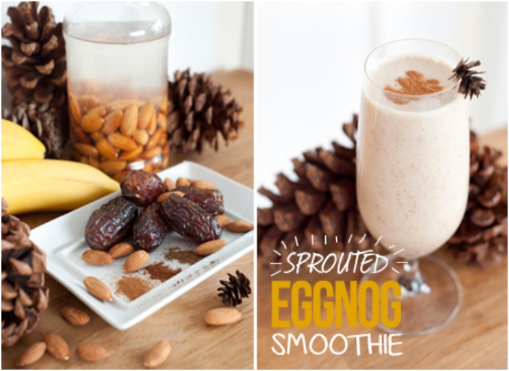 sprouted-eggnog-smoothie