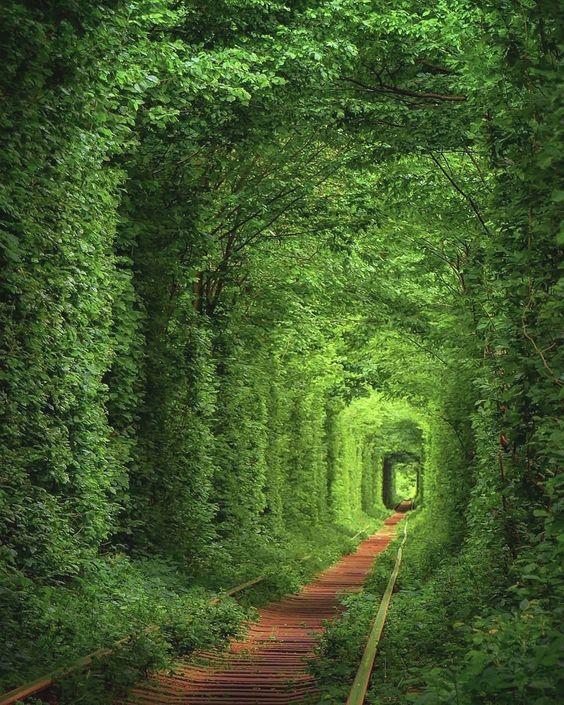 tunel-of-love-ukraine-