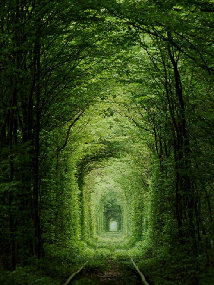 tunnel-of-love-ukraine-amos-chapple-rex-features