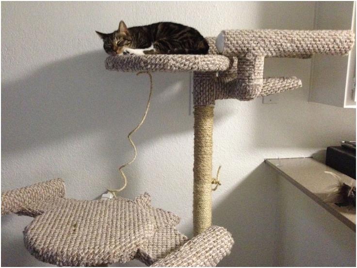 DIY-Star-Trek-Cat-Tree