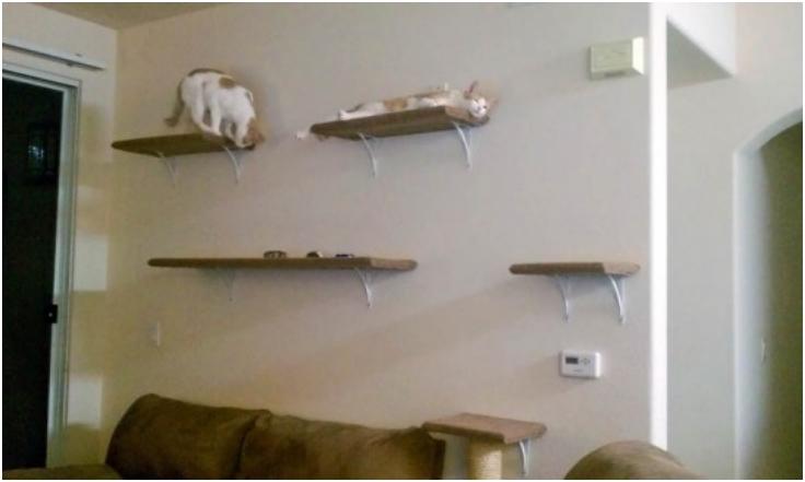 DIY-wall-mounted-cat-tree
