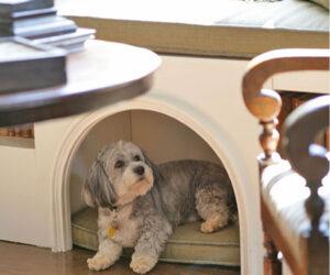 Top 10 Interesting Design Ideas for Pet Spaces