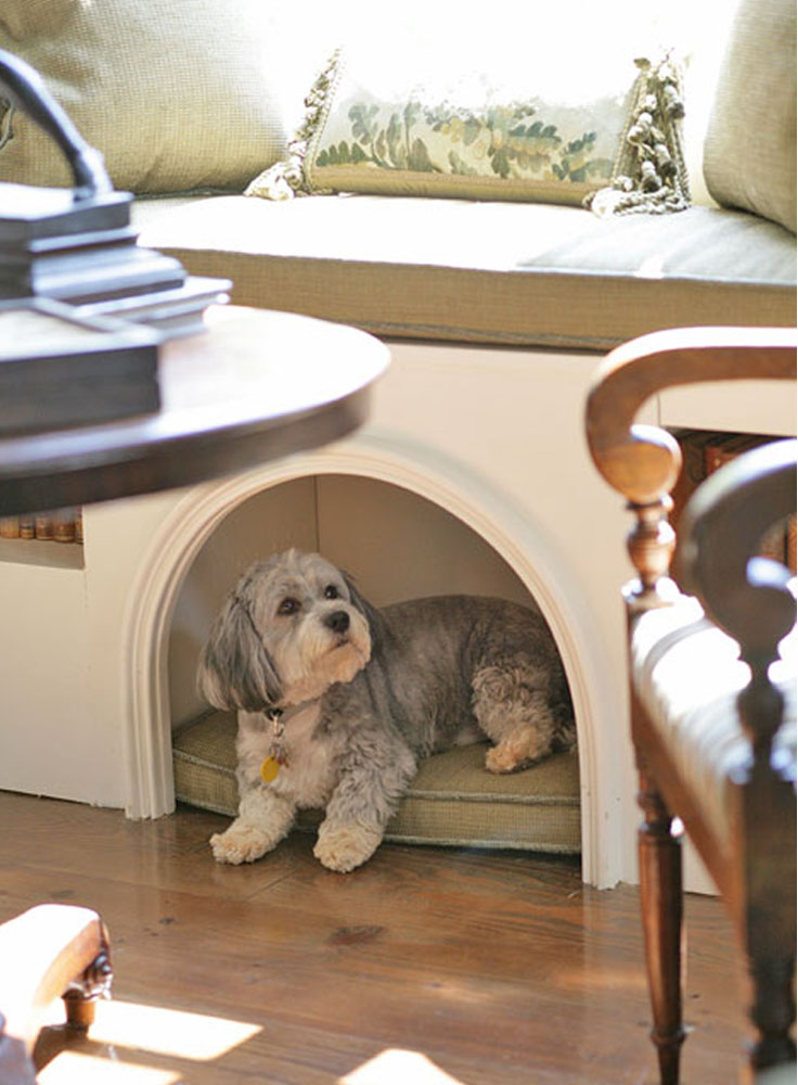 Top 10 interesting design ideas for pet spaces top inspired - Pets for small spaces style ...