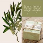 Tea-Tree-Soap-Recipe-150x150