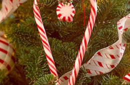 Top 10 Best DIY Christmas Projects with Candy Canes | Top Inspired