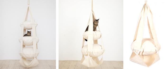 cat-trapeze-