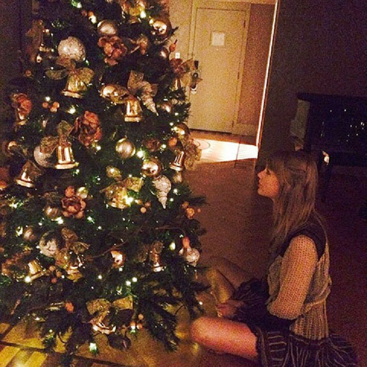 Top 10 Most Adorable Celebrity Christmas Trees Top Inspired