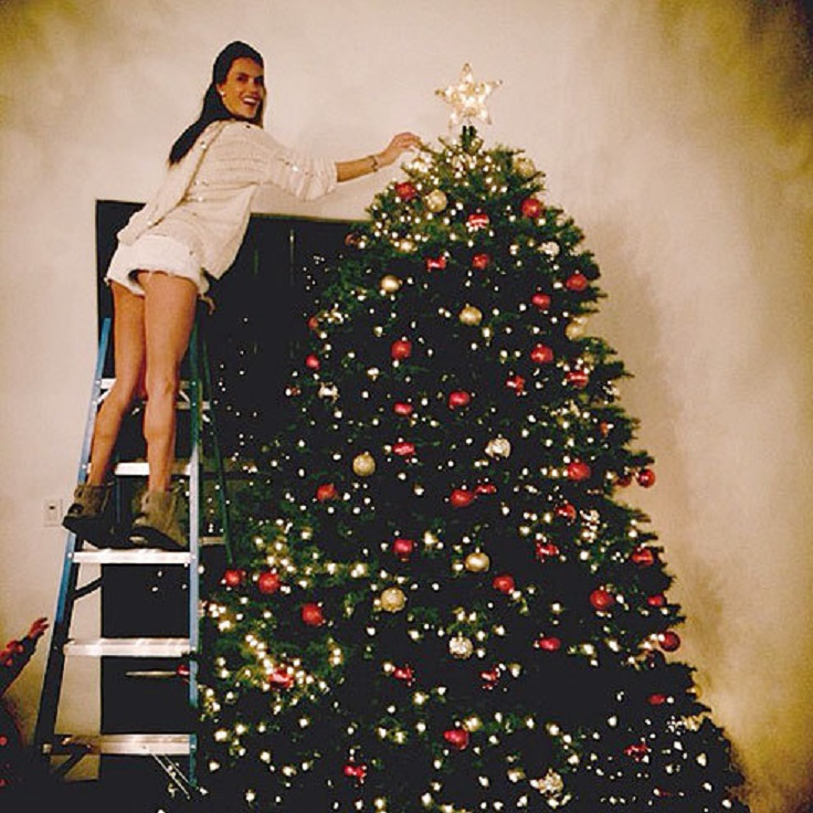 most-adorable-celebrity-christmas-trees_03