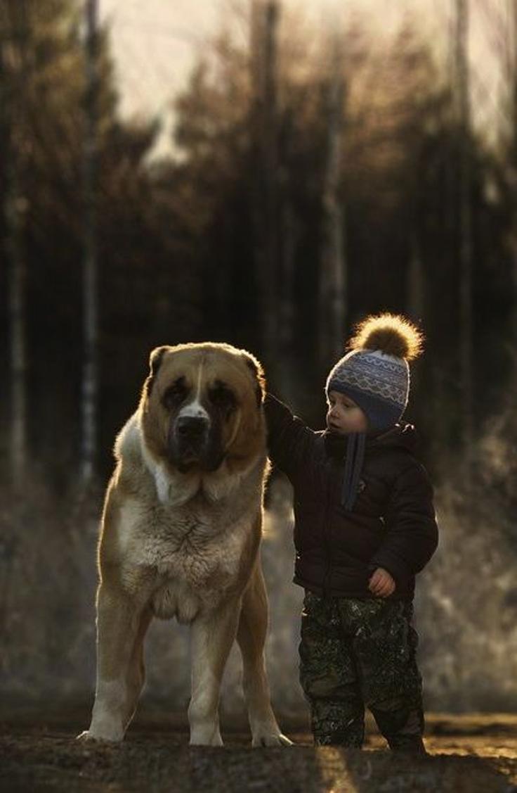 8-Best-Friends