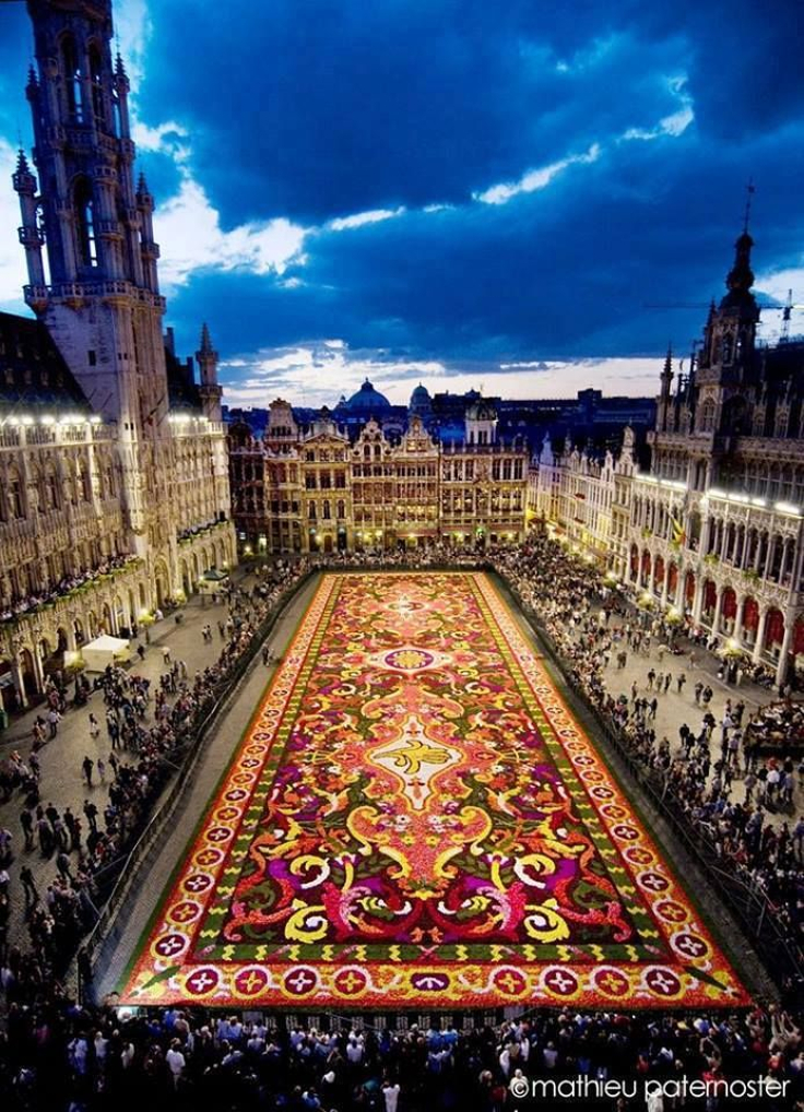 Carpet Of Flowers Brussels Belgium