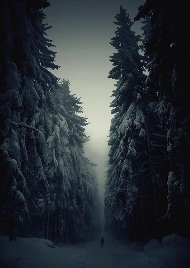 Deep-Snowy-Night_06