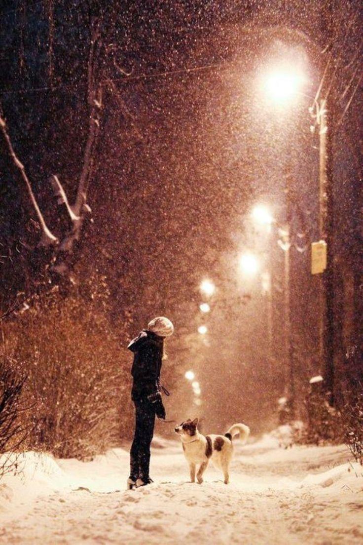 Dog-Love_07