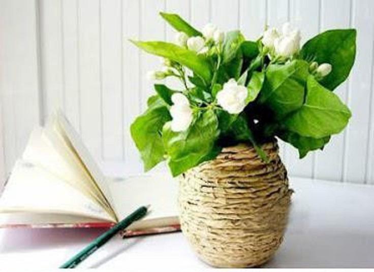 Glass Jar Flowerpot