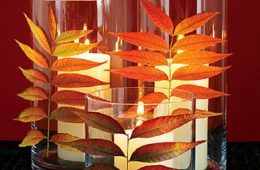 Top 10 DIY Projects with Fall Leaves | Top Inspired