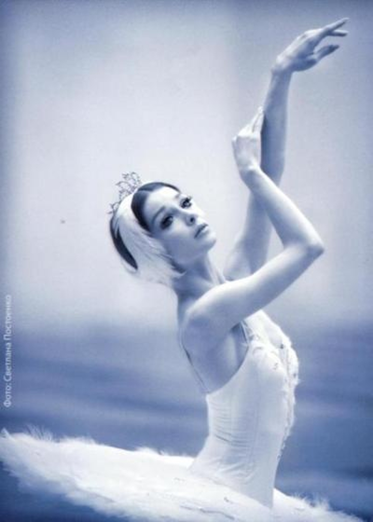White-Swan