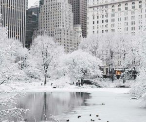 Top 10 Most Astonishing Photos of NYC Covered With Snow