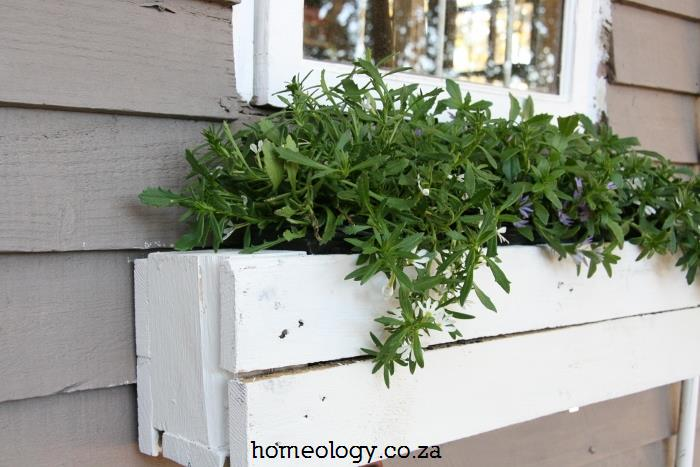 diy-window-box-garden