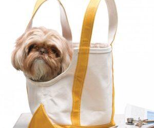 Top 10 DIY Conversion Bag Ideas