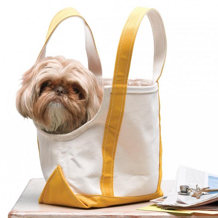 dogie-bag