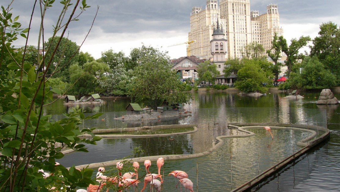moscow-zoo-