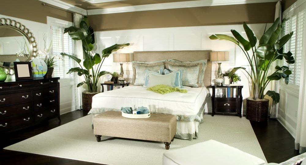 palnts-in-bedroom-