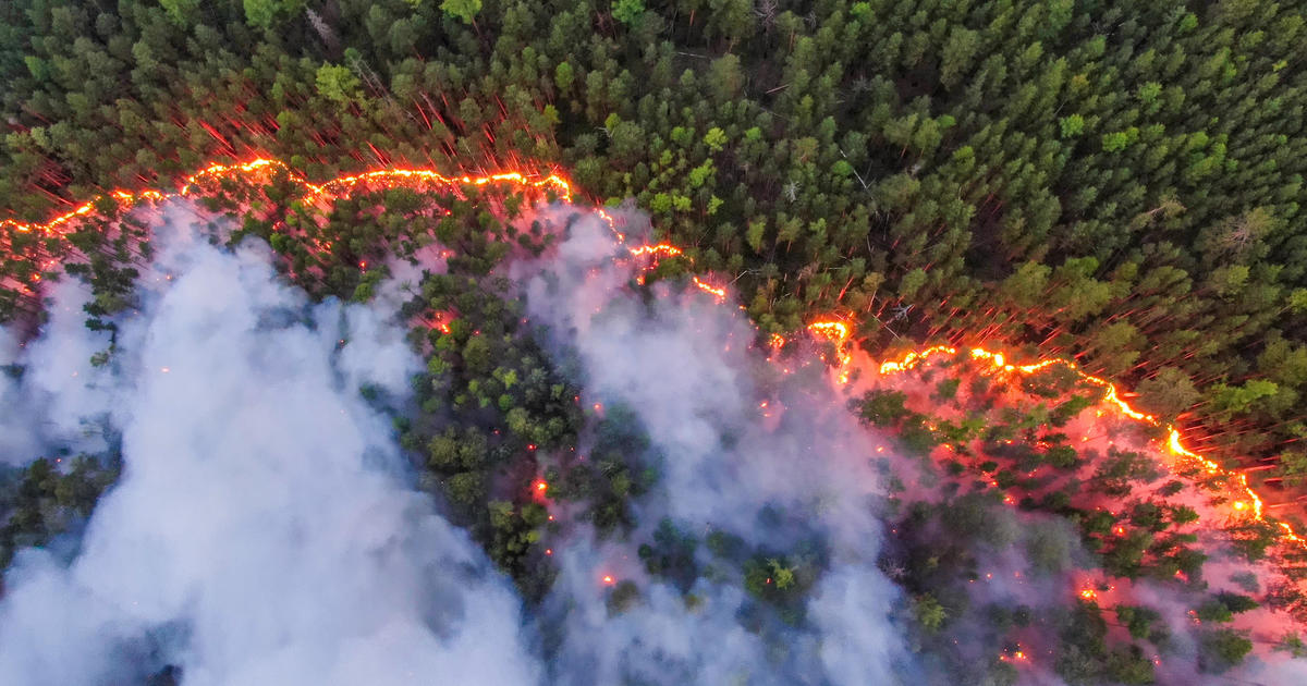 siberian-forest-on-fire-