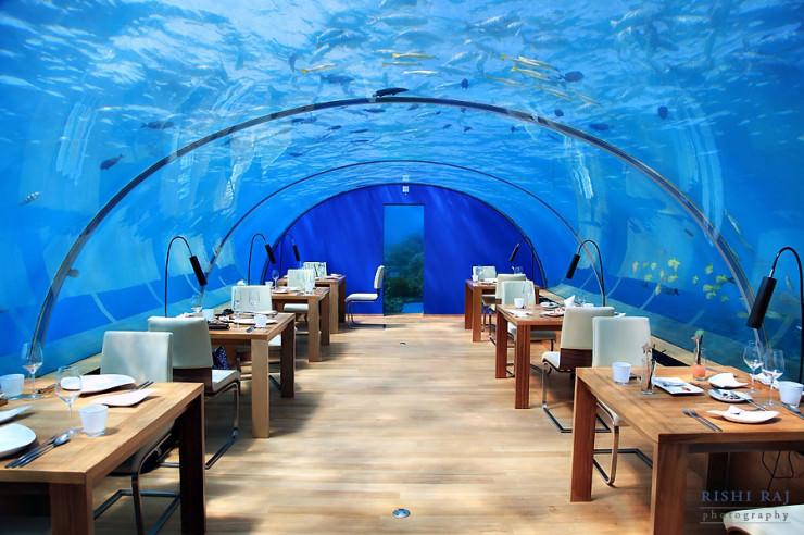 underwater-restaurant-for-honeymoon-