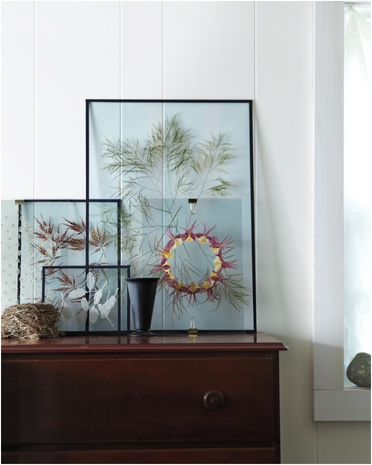 Top 10 diy s for preserving and displaying dried flowers for Ways to frame pictures